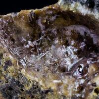 Sanidine In Volcanic Glass