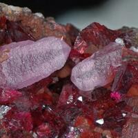 Cobaltoan Austinite Cobaltlotharmeyerite Roselite & Calcite