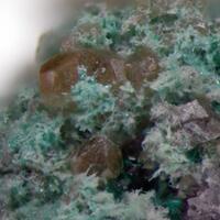 Powellite & Brochantite