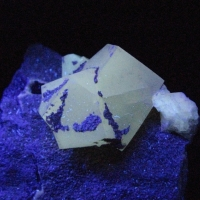 Calcite & Saponite