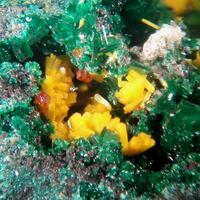 Kasolite Wulfenite & Torbernite