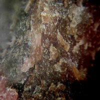 Feitknechtite & Rhodonite