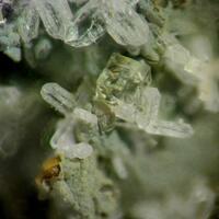 Chabazite-Mg
