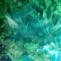 Guanacoite Arhbarite & Conichalcite
