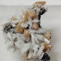 Bultfonteinite & Olmiite