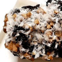 New Brand Minerals: 19 Oct - 25 Oct 2019