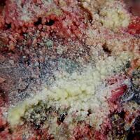 Uranospinite & Erythrite