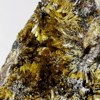 New Brand Minerals: 30 Jul - 05 Aug 2020