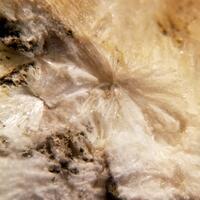 Bavenite & Opal On Smoky Quartz