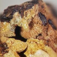 Cobaltarthurite & Barahonaite-(Fe)