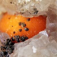 Ferrierite-Mg Palygorskite Calcite Mordenite
