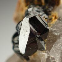 Cassiterite With Zinnwaldite On Quartz