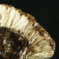 Phlogopite & Anthophyllite