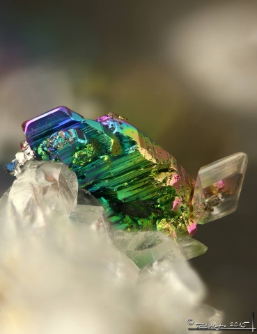 Mineral Images Only: Krennerite