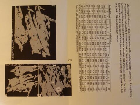 Analysis Report - only: Monohydrocalcite & Vaterite