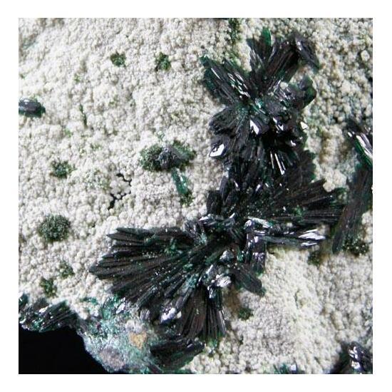 Atacamite Olivenite & Metahalloysite