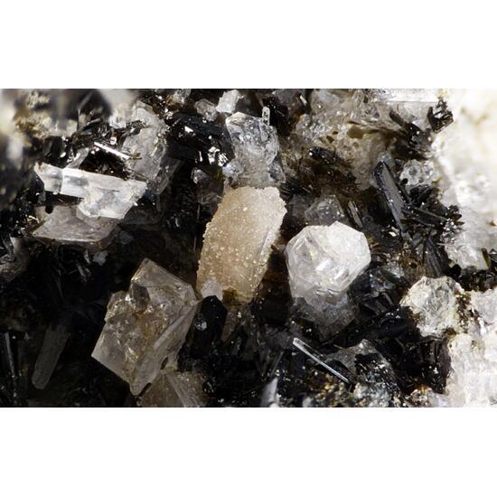 Zircon Aegirine Titanite & Nosean