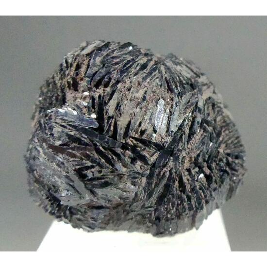 Vivianite With Lignite