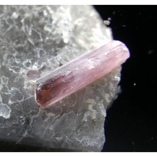 Elbaite Var Rubellite On Smoky Quartz With Cleavelandite