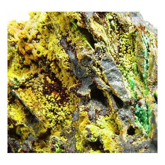 Cacoxenite & Chalcosiderite