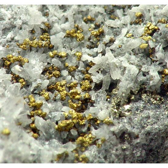 Gold & Argyrodite