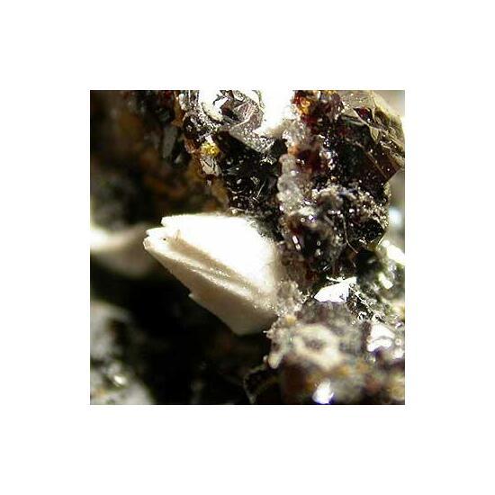 Sphalerite With Baryte Psm Alstonite