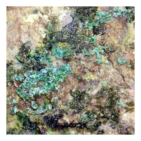 Parnauite & Olivenite