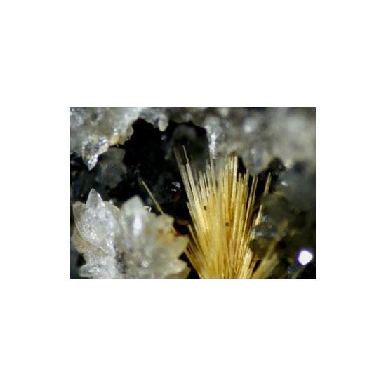 Klebelsbergite With Cervantite