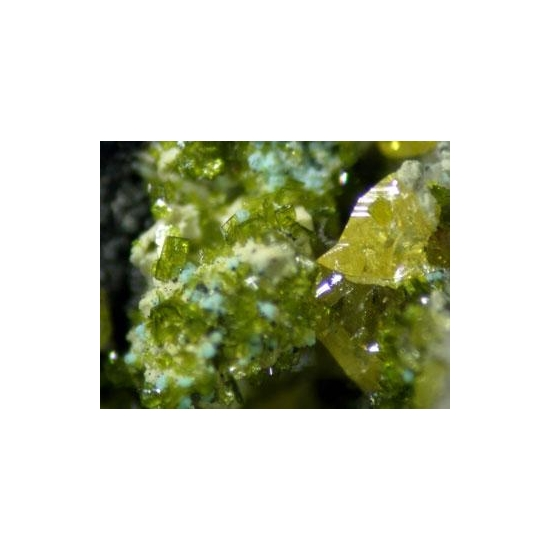 Molybdofornacite With Wulfenite