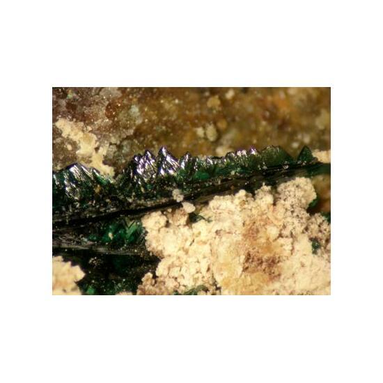 Anatacamite With Atacamite