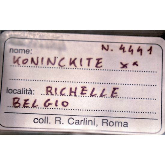 Koninckite & Gypsum