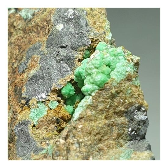 Annabergite Cabrerite & Galena With Manganese Dendrites