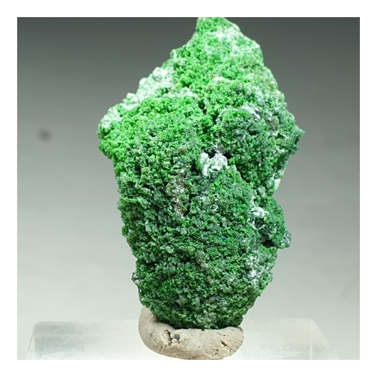 Conichalcite & Olivenite