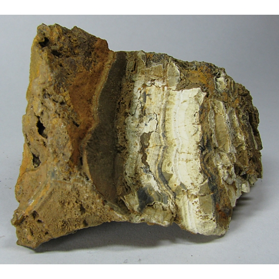 Sphalerite Var Schalenblende & Smithsonite