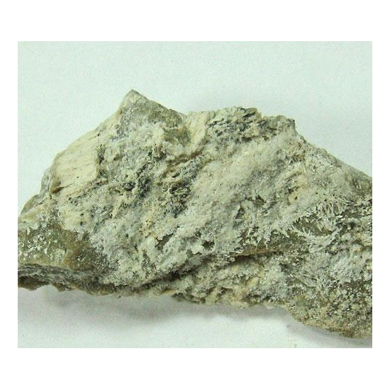 Bassanite On Gypsum