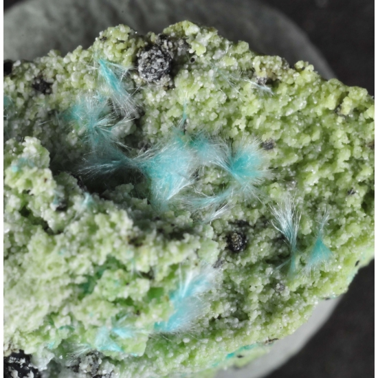 Zincrosasite