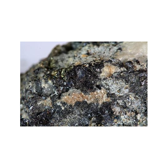Bornite & Pyrite