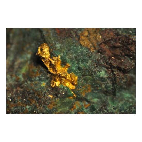 Gold On Chrysocolla