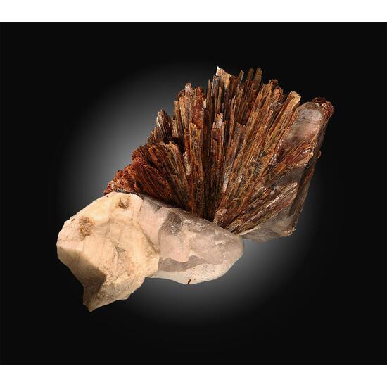 Niobophyllite
