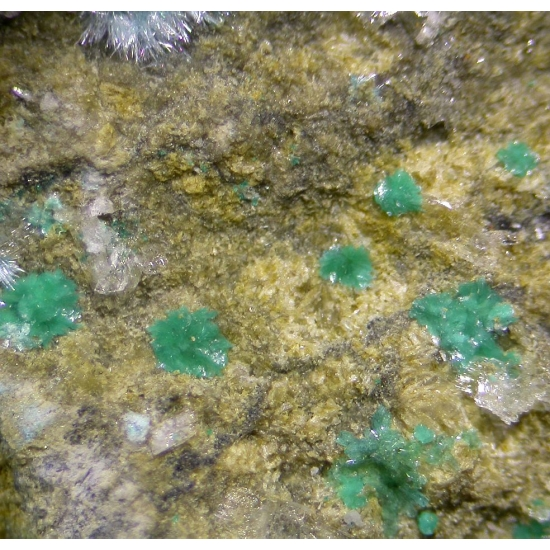 Namuwite & Orthoserpierite