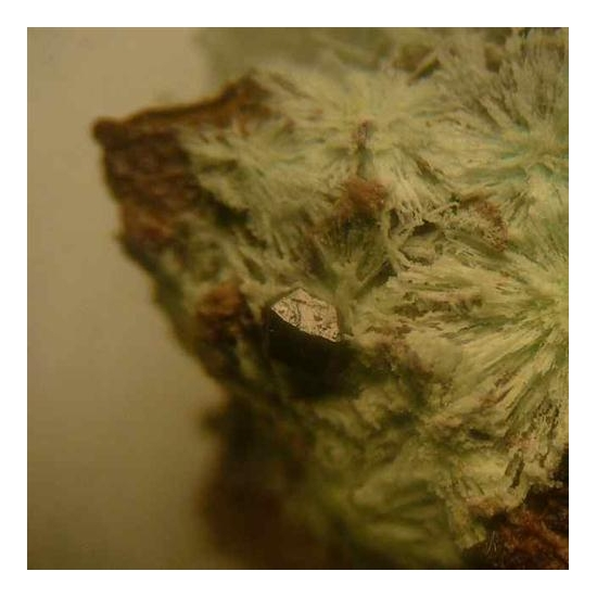 Chlorargyrite Perite & Fluorite