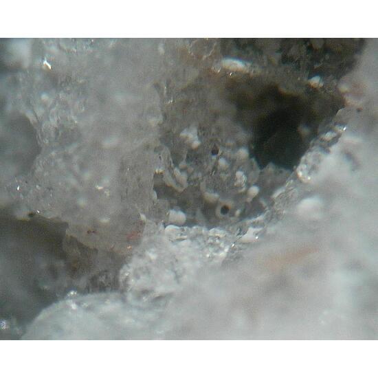 Gobbinsite Analcime & Saponite