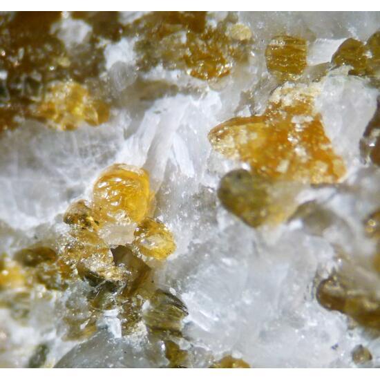 Norbergite & Clinohumite