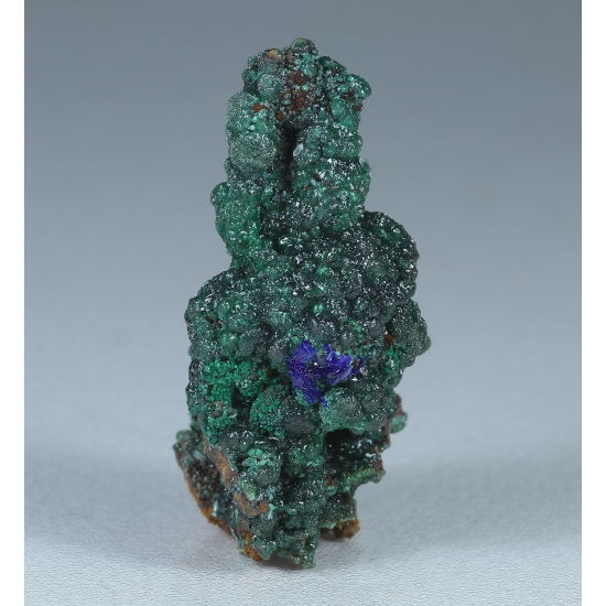 Cuprian Adamite & Azurite