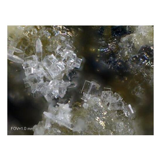 Thomsonite-Ca Willhendersonite & Gismondine