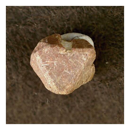 Hydrokenomicrolite