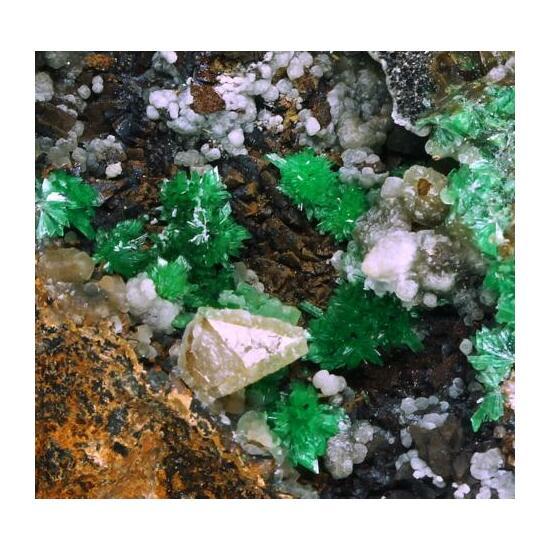 Annabergite Calcite & Psilomelane