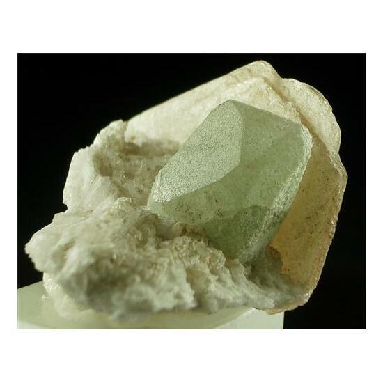Hydroxylherdeite With Phlogopite
