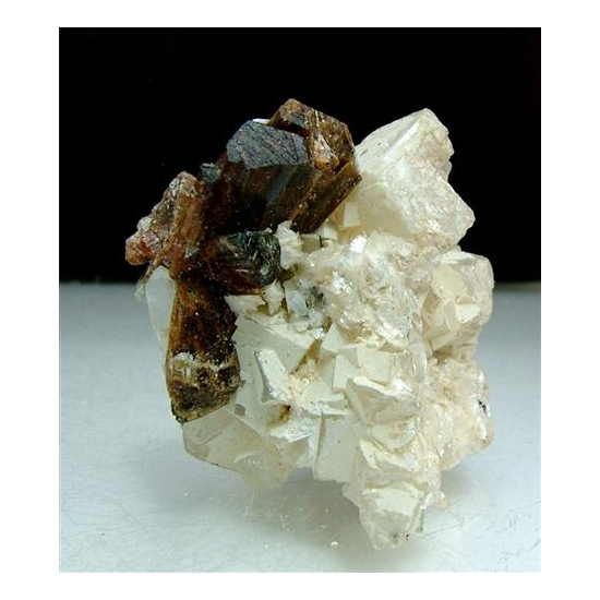 Pargasite With Dolomite