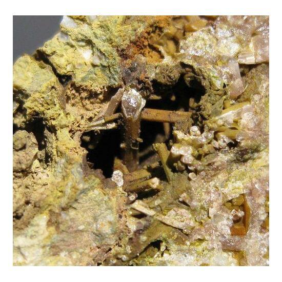 Pyromorphite & Plumbogummite Psm Plumbojarosite